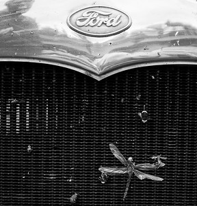 Ford Model A, dragonfly