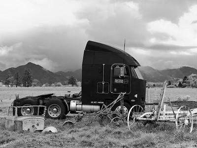 Oregon Coast 2005