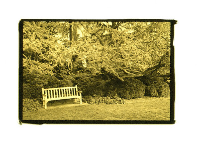 In the Bishop's Garden.  Gilded Photograph on Vellum.  See Image Notes button.
