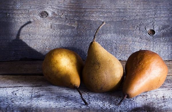 Winter Pears - The late afternoon sun highlights these golden pears sitting on a shelf of old weathered wood. I like the warm tones of the pears with the cool gray wood. I like the nesting curves of the pears in a group of three. I like the rough textures and I like the that one shadow. For me, that's a lot to like.