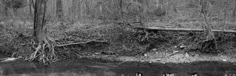 Sycamore Falls Creek: below Marker 6
