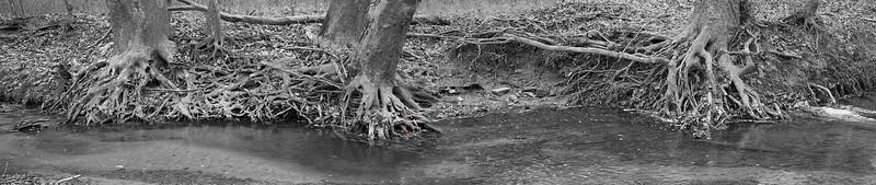 Sycamore Falls Creek: at Marker 2