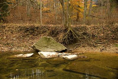 Sycamore Falls Creek: pond detail