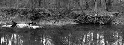 Sycamore Falls Creek: pond banks above falls