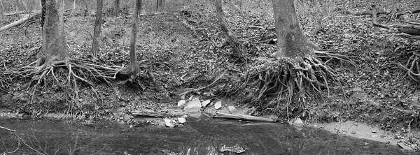 Sycamore Creek Falls: above Marker 4