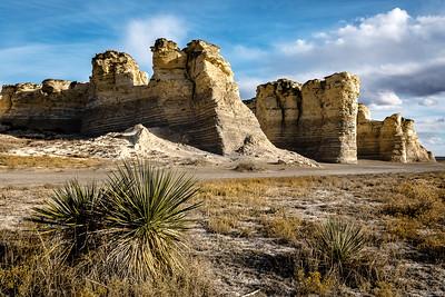 Yucca & monument rocks