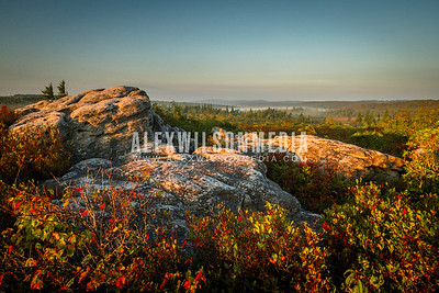 Sunrise at Dolly Sods