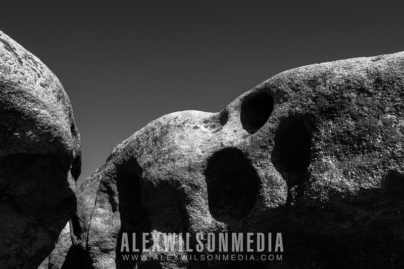 Graphic Boulders - Dolly Sods