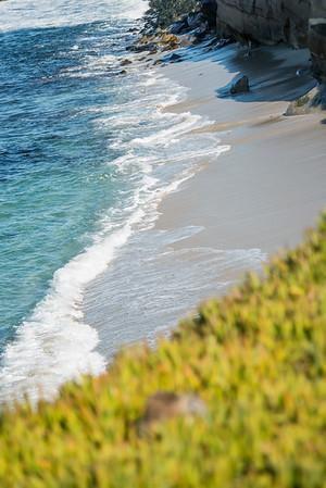 La Jolla Cove Series