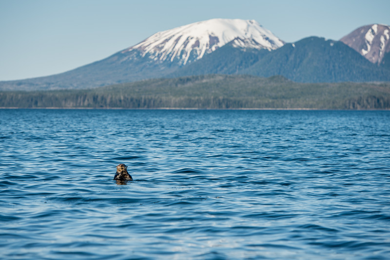 Sitka Alaska Series