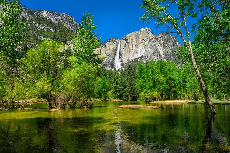 "Yosemite ""Emerald Daze"""