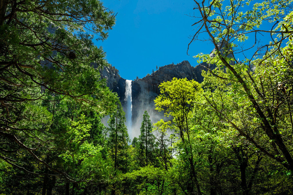 "Yosemite-""Misty"""