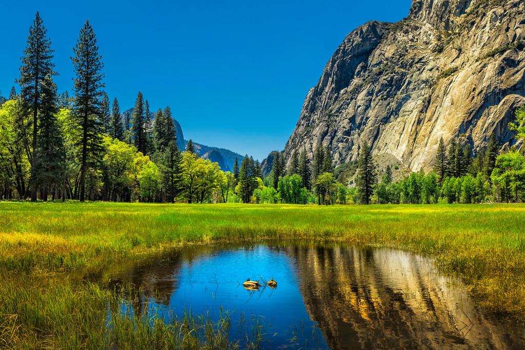 "Yosemite ""Duck Pond"""