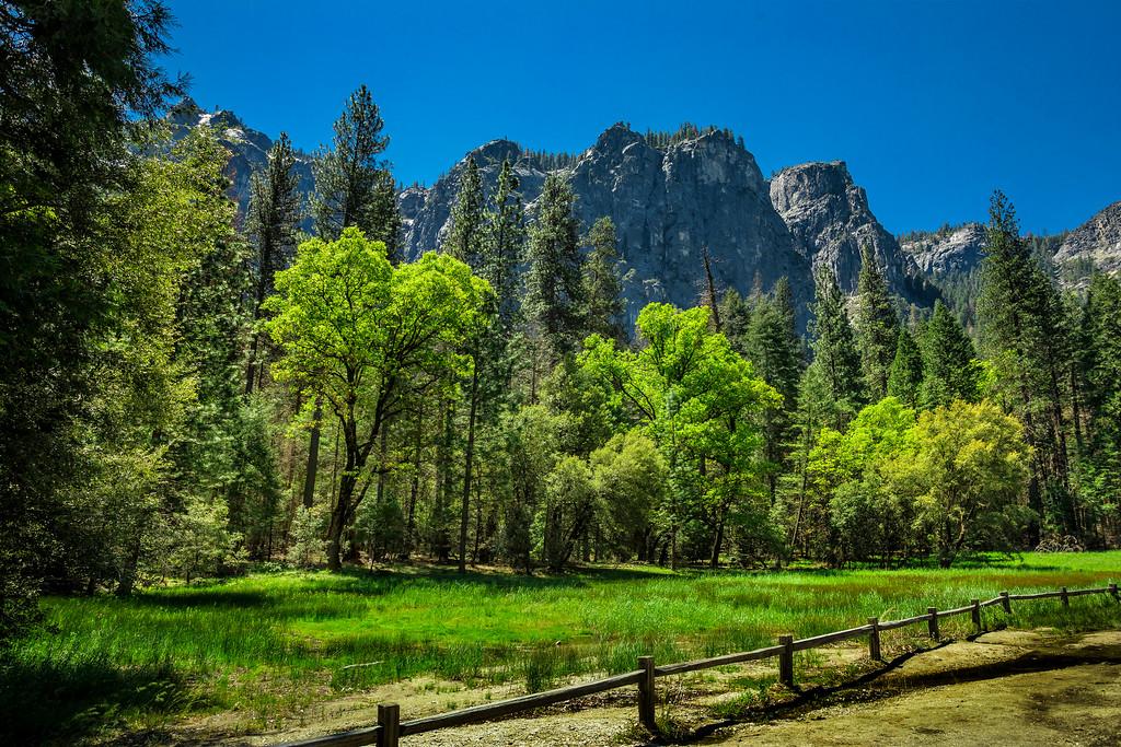 """Yosemite """"A Walk in the Park"""""""