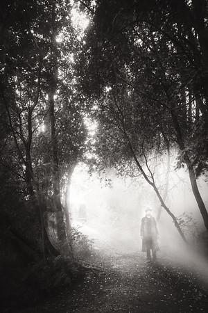 Walk Through Rain I (Sunrays)