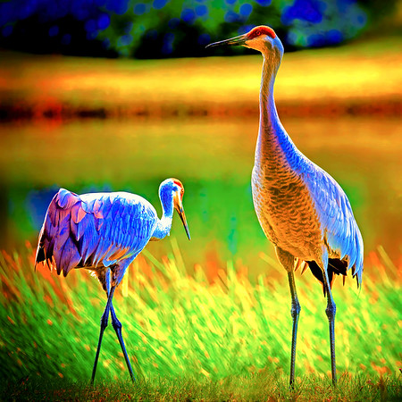 Two Cranes in Heaven
