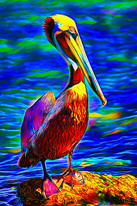Pelican Zoomed Up