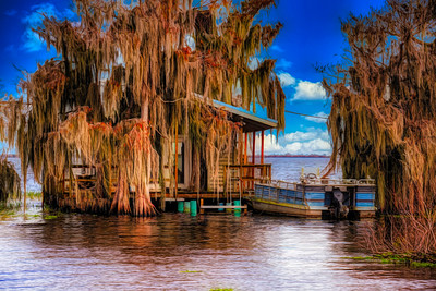 blue cypress lake hous