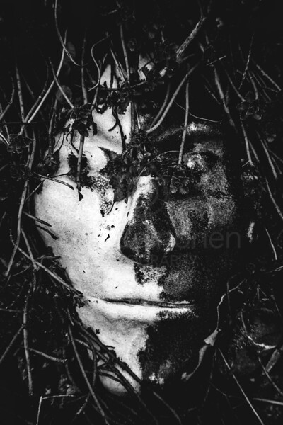 Grounded Mask III (Black And White)