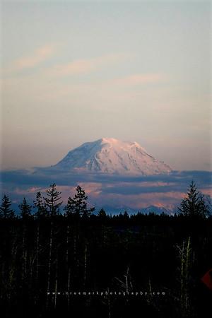 Mt. Rainier Pop Up