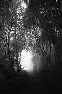 Walk Through Rain II (Back)