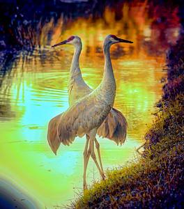 Cranes on Pluto