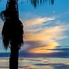 Huntington Beach Palm Tree Shadows and Blue Sunset©2014 MelissaFaithKnight&FaithPhotographyNV -4751