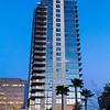 Huntington Beach Palm Tree Shadows and Blue Sunset©2014 MelissaFaithKnight&FaithPhotographyNV -5669