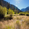 Lundy Beaver Ponds Oct 4 ©2016MelissaFaithKnight&FaithPhotographyNV_0830