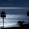 Palm Tree Shadows and Sails Laguna©2014 MelissaFaithKnight&FaithPhotographyNV -