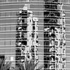 Santa Ana Glass Reflections B&W ©2014 MelissaFaithKnight&FaithPhotographyNV -
