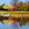 Lakeridge #2  Spring April @2014MelissaFaithKnight&FaithPhotographyNV_MG_5979
