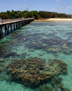 2020-The clear waters of Green Island and the coral reef off Australia (8x10)