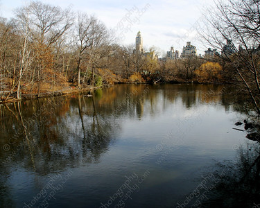 NEW! 6008-A tranquil lake in Central Park during the winter (8x10)