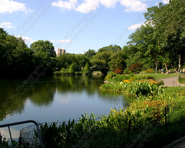 NEW! 6046-A tranquil lake in Central Park during the summer (8x10)