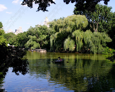 NEW! 6054-A rowboat in the middle of a quiet lake in Central Park (8x10)