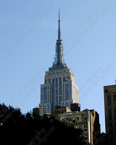 3180-The Empire State Building in New York City on a sunny day (8x10)