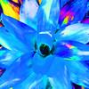 Stylized flower.