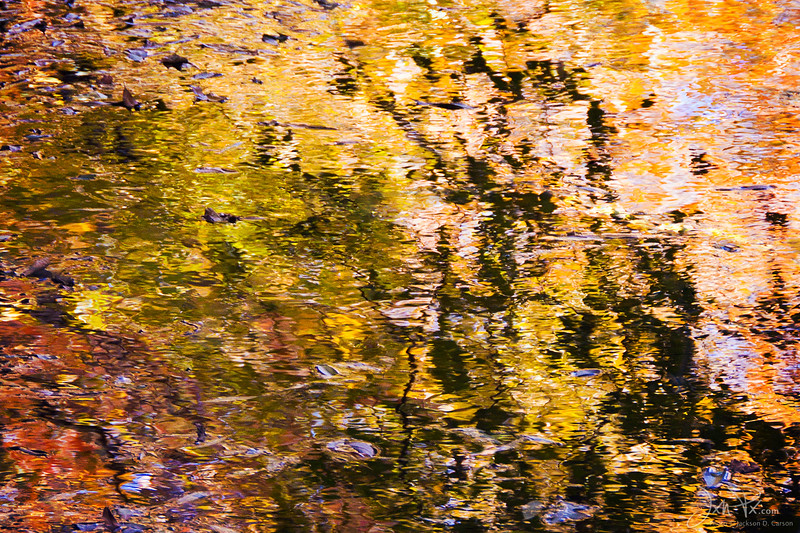 Golden Abstract