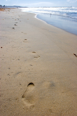 Beaches, Tropics & The Southwest
