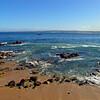 Monterey Bay IMG_5397