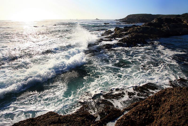 Point_Lobos_213