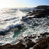 Point_Lobos_213