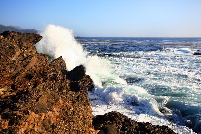 Point_Lobos_217