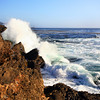 Point_Lobos_217