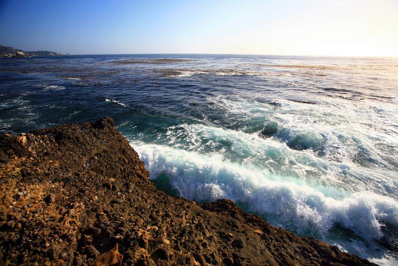 Point_Lobos_207