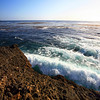 Point_Lobos_207