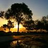 Sunrise IMG_5442