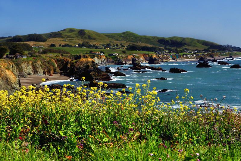 Bodega Bay_CA_Coast_1576