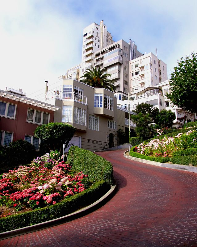 """""""Lombard Street""""  San Francisco, CA<br /> <br /> Images by Josh   <br /> <br /> <br /> <br />  <a href=""""http://www.imagesbyjosh.com"""">http://www.imagesbyjosh.com</a>"""